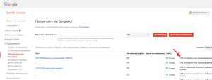 google-webmaster-indeksacia7